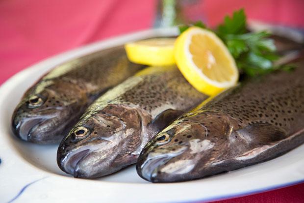 Forellenteller - Culinary delights