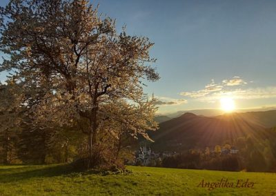Mariazell in der Abendsonne 400x284 - Nature