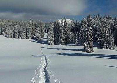 Schneelandschaft 400x284 - Naturskönheter