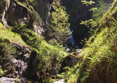 Wasserloch 10 400x284 - Hikes