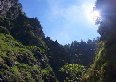 Wasserloch 17 400x284 - Hikes