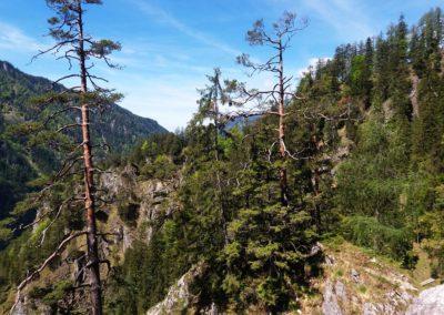Wasserloch 40 400x284 - Hikes