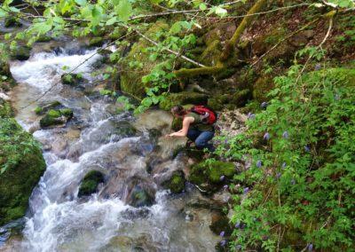 Wasserloch 5 400x284 - Túra útvonalak