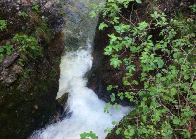 Wasserloch 7 400x284 - Túra útvonalak