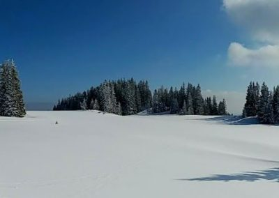 Winterlandschaft 400x284 - Nature