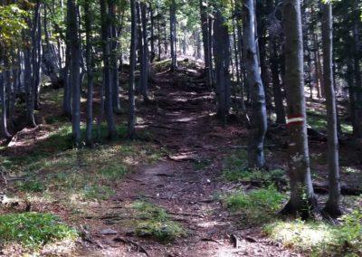a Aufstieg 1 400x284 - Hikes
