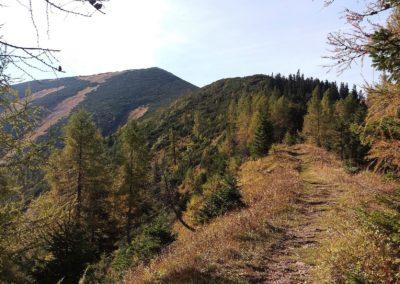 a Aufstieg 5 400x284 - Hikes